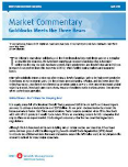 Market Commentary document icon