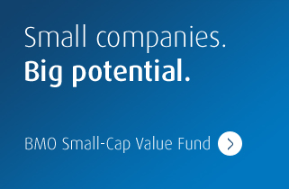 Small companies. Big potential. BMO Small-Cap Value Fund